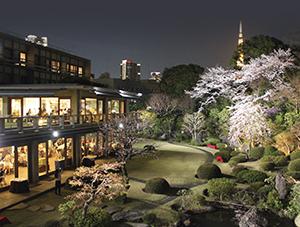 写真:夜桜